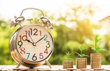 Alarm clock and seedlings